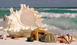 Минералы моря