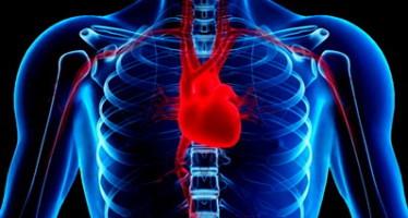 Забудьте заболевания сердца с Форевер Кардиохелф