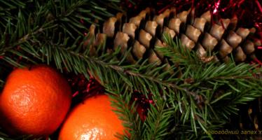 Запах хвои в нашем доме под Новый год
