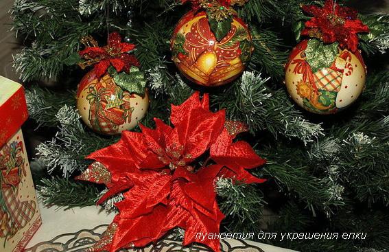 пуансетия для украшения елки