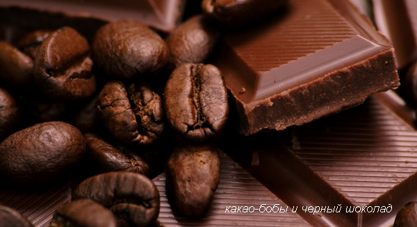 какао-бобы и черный шоколад