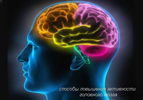 способы повышения активности головного мозга