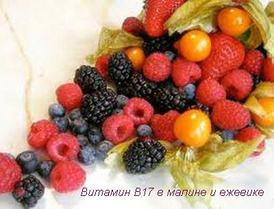 Витамин В17 в малине и ежевике