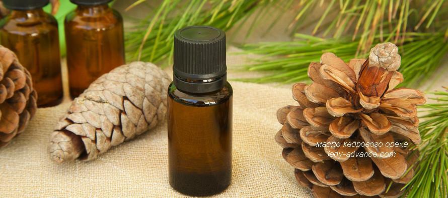 Масло кедрового ореха — целебная сила сибирских лесов