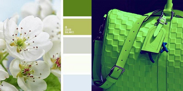 цвет Зеленая вспышка