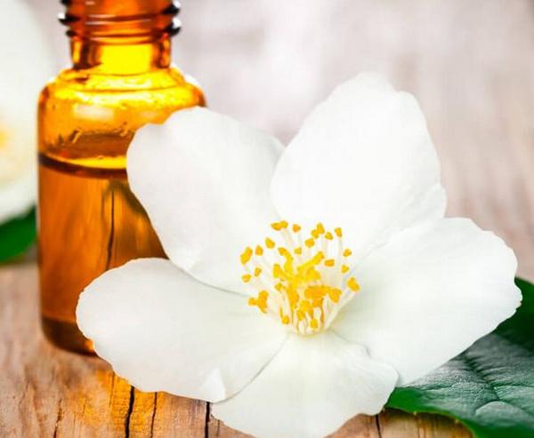 масло жасмина для улучшения запаха волос