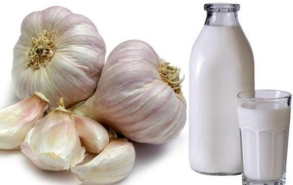чеснок и молоко для лечения радикулита