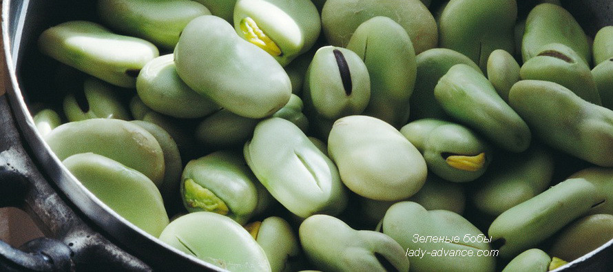 Зеленые бобы — кладезь ценных питательных веществ